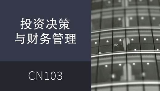 Investment and Financing Decisions cn CN301